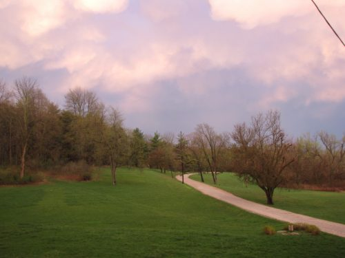 Pink-purple sky with green grass after storm
