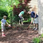 Mulching the Lodge